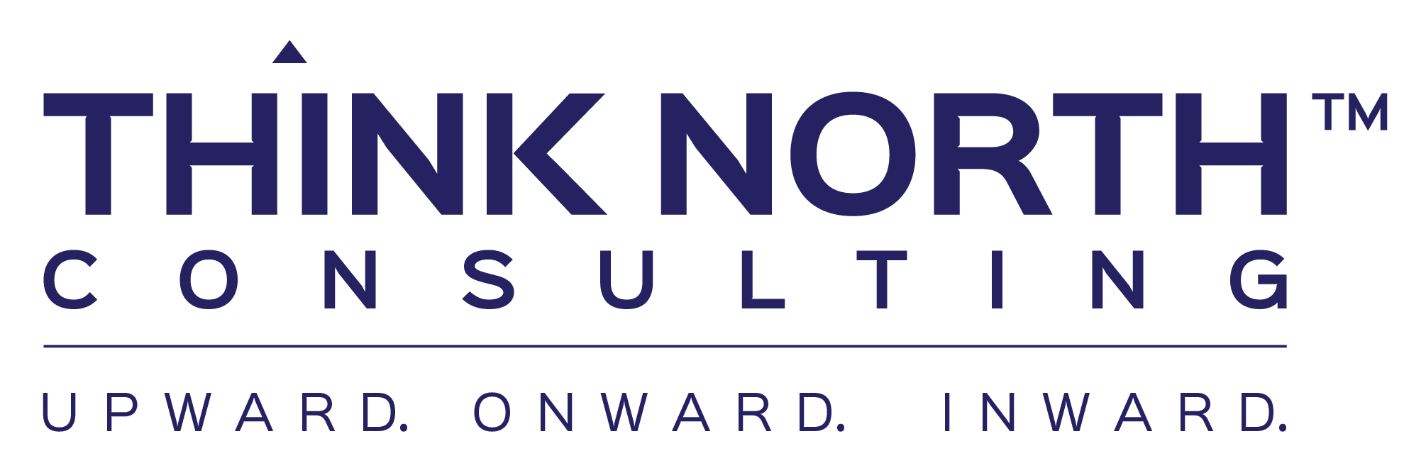 Think North Consulting